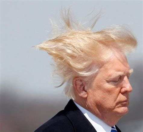 Trump claims wind farms cause cancer (they don't)